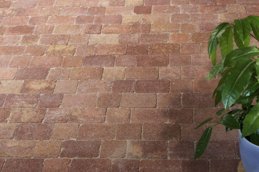 San Rémo linéaire feuille de vigne vieilli